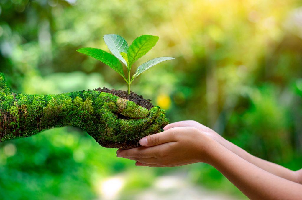 Geste der Nachhaltigkeit